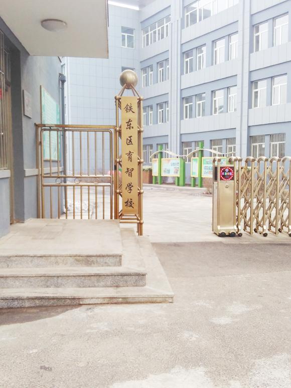 辽宁鞍山市特殊教育资源中心儿童智力测试仪安装